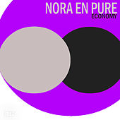 Economy by Nora En Pure