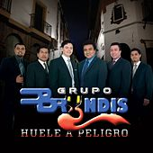 Play & Download Huele a Peligro by Grupo Bryndis | Napster