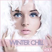 Play & Download Winter Chill,  Vol. 1 by Various Artists | Napster