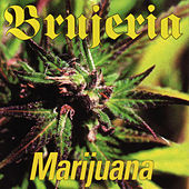 Play & Download Marijauna by Brujeria | Napster