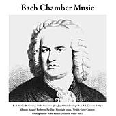 Play & Download Bach: Air On the G String/Violin Concertos/Jesu, Joy of Man's Desiring / Pachelbel: Canon in D Major / Albinoni: Adagio / Beethoven: Fur Elise/Moonlight Sonata / Vivaldi: Guitar Concerto / Wedding March / Walter Rinaldi: Orchestral Works, Vol. I by Bach Chamber Music | Napster