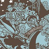 Play & Download Winning Days by The Vines | Napster