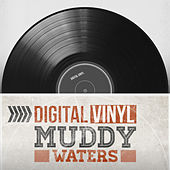 Digital Vinyl by Muddy Waters
