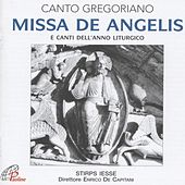Play & Download Missa de Angelis (E canti dell'anno liturgico) by Enrico de Capitani Stirps Iesse | Napster