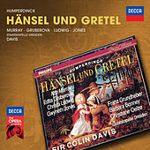 Play & Download Humperdinck: Hänsel und Gretel by Various Artists | Napster