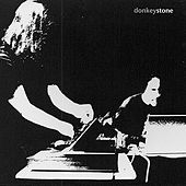 Play & Download Stone by Donkey | Napster