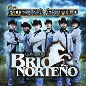 Play & Download Con Fuerza Y Estilo by Conjunto Brio Norteño | Napster