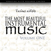 Play & Download The Most Beautiful Instrumental Music Vol 1 by Various Artists | Napster