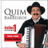 Play & Download Êxitos Vol.1 by Quim Barreiros | Napster