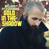 Gold in the Shadow by William Fitzsimmons