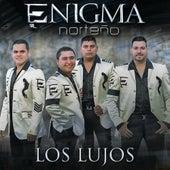 Play & Download Los Lujos by Enigma Norteño | Napster
