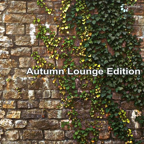 Play & Download Autumn Lounge Edition by Various Artists | Napster