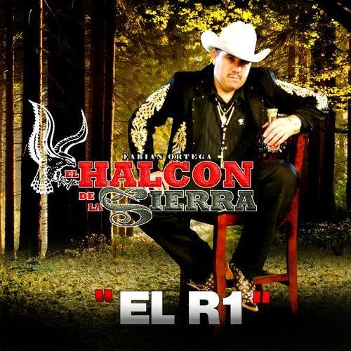 Play & Download El R1 by El Halcon De La Sierra | Napster