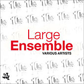 Play & Download Large Ensemble by Various Artists | Napster