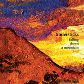 Play & Download Falling Down a Mountain by Tindersticks | Napster