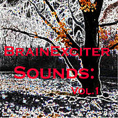 Brain Exciter Sounds: Vol.1 by Various Artists