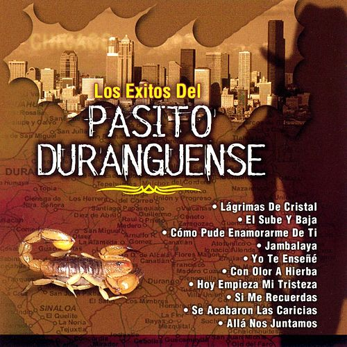 Los Exitos del Pasito Duranguense by Various Artists