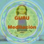 Play & Download Guru Meditacion by Various Artists   Napster