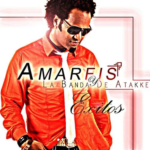 Play & Download Exitos by AMARFIS Y LA BANDA DE ATAKKE | Napster