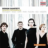 Play & Download Quartettsätze by Signum Quartet | Napster