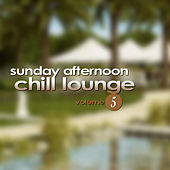 Play & Download Sunday Afternoon Chill Lounge Vol. 5 by Various Artists | Napster