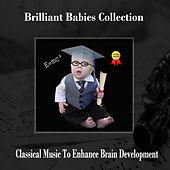 Brilliant Babies Grad Collection by Various Artists