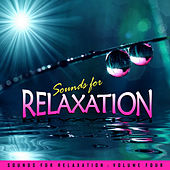 Sounds for Relaxation Vol. 4 by Everness