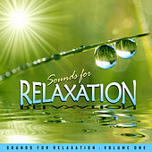 Play & Download Sounds for Relaxation Vol. 1 by Various Artists | Napster