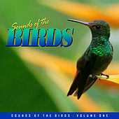 Relaxing Sounds of the Birds Vol. 1 by Various Artists