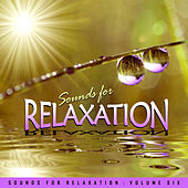 Play & Download Sounds for Relaxation Vol. 6 by Various Artists | Napster