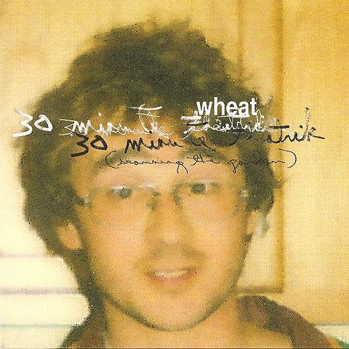 Play & Download 30 Minute Theatrik (scanning the Garden) by Wheat | Napster