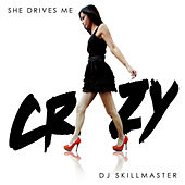 Play & Download She Drives Me Crazy by DJ Skillmaster | Napster
