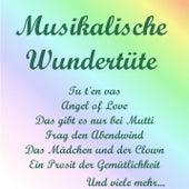Musikalische Wundertüte by Various Artists