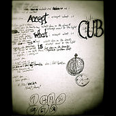 Accept What Is by Cub