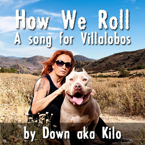 Play & Download How We Roll by Down | Napster