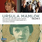Music of Ursula Mamlok, Vol. 3 by Various Artists