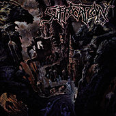 Souls To Deny by Suffocation