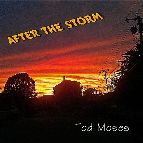 After the Storm by Tod Moses