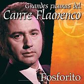 Play & Download Figuras del Cante Flamenco by Fosforito | Napster