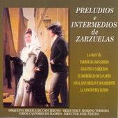 Preludios e Intermedios de Zarzuelas 1 by Orquesta Iberica de Conciertos
