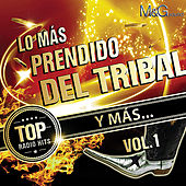 Lo Más Prendido Del Tribal Y Más Vol. 1 by Various Artists