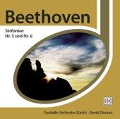 Beethoven Sinfonie Nr. 5&6 by David Zinman