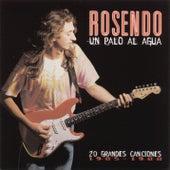 Play & Download Un Palo Al Agua (20 Grandes Canciones) by Rosendo | Napster