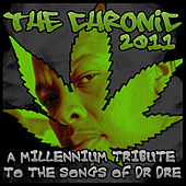 Chronic 2011: A Millennium Tribute To The Songs Of Dr. Dre by Various Artists