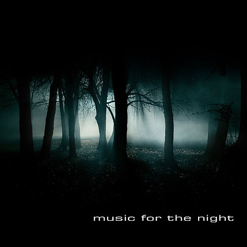 Music for the Night by Various Artists