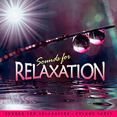 Play & Download Sounds for Relaxation Vol. 3 by Various Artists | Napster