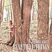 Play & Download Beautiful Things by Anthony Green | Napster