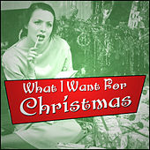 What I Want For Christmas by Various Artists