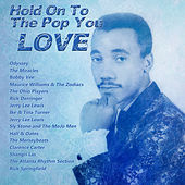 Hold On To The Pop You Love by Various Artists