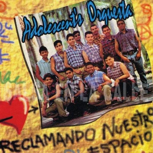 Play & Download Reclamando Nuestro Espacio by Orquesta Adolescentes | Napster
